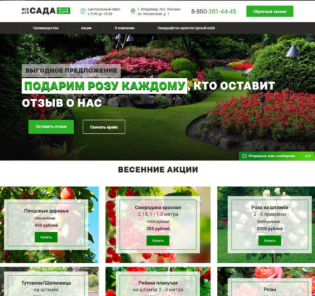 Разработка Landing page во Владимире